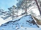 城址雪景(本丸を見上げる)…