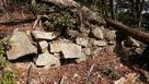 倒木に潰された石垣…