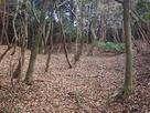 須川山砦-主郭…