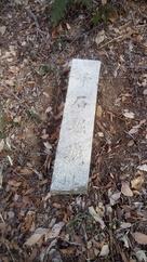 倒れた?落ちた石碑。…