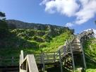 見上げる城郭と階段…