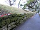 学校に隣接した石垣…