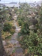 反対側は塀や柵など何もなく民家の庭!…