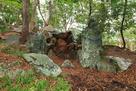 武蔵の庭園、阿波青石で組まれた滝の跡…