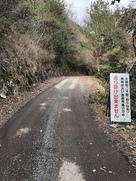 攻城路の林道