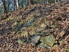 石積み(本丸帯曲輪南下)…