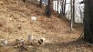本丸跡の切岸に立っている説明板と秋葉神社…