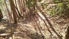 本丸跡から5本目の竪堀…