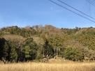 麓(准藩士屋敷跡)からの遠景…
