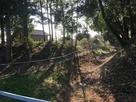 黒澤屋敷と江田館の土塁と堀跡…