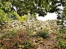 西の丸石垣