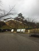 雨の掛川城