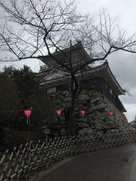 雨上がりの浜松城…