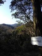 勝尾城を望む