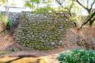 本丸西埋門跡から北に繋がる石垣…