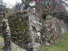 一分咲きの桜と石垣…