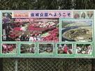 戦国の城 台城公園へようこそ…