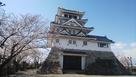 桜の天守閣は、綺麗だねぇ~d(^-^)…