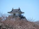 浜松城駐車場から天守北東面と桜…