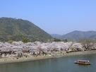 春の錦川と岩国城…
