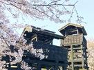 桜と城門と物見櫓…