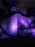 石垣のライトアップ…