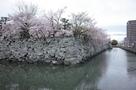 月見櫓跡と堀川…