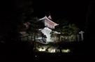 東南隅櫓(桜まつりライトアップ)…