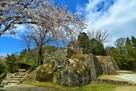 大矢倉台石垣と桜…