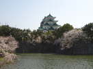 桜と天守其の四…