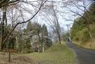 音羽城士屋敷跡の春の風景…