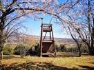 狼煙台(桜の季節)…