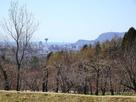 四稜郭から見える五稜郭タワー
