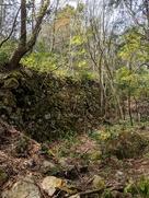 大土塁下の石垣…