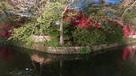 城址公園(堀側から)