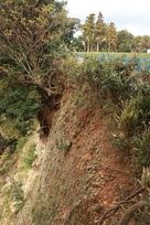 1郭西側の崖