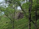 出丸の石垣