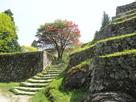 新緑の岩村城