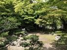 清瀧寺徳源院庭園…