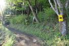 平沢登山口から…