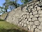 竹之丸東面石垣…
