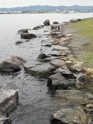 琵琶湖と城のせめぎ合い…