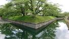 稜堡式石垣と水堀…