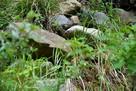 登城道斜面に見える石…