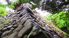 石垣と新緑