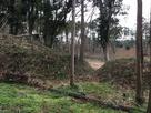 南虎口の土塁