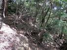 畝状竪堀群(西郭の下)…