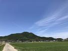 八幡山城遠景(西側から)…