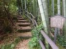 東郭(二の丸)櫓台登り口…