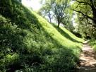 椎の木城(北郭)西側の切岸